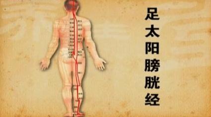 十二经络【足太阳膀胱经】经络穴位动态图讲解