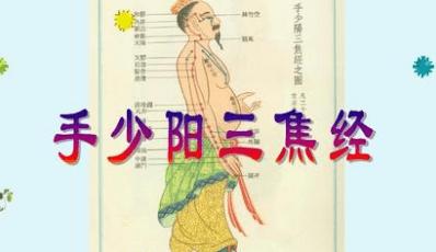 十二经络【手少阳三焦经】经络穴位动态图讲解