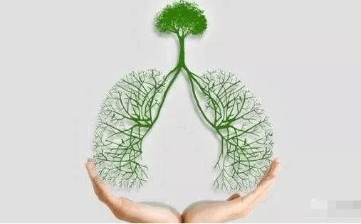 肺结核的艾灸治疗方法